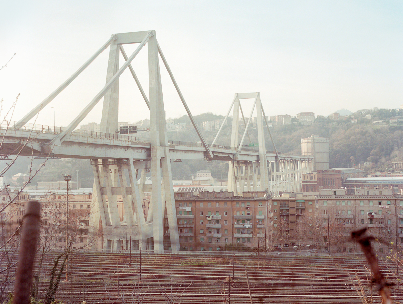 Photo of the Morandi Bridge