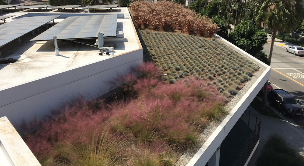 Photo of Playa Vista Community Center outfitted with American Hydrotech's Monolithtic Membrane MM6125
