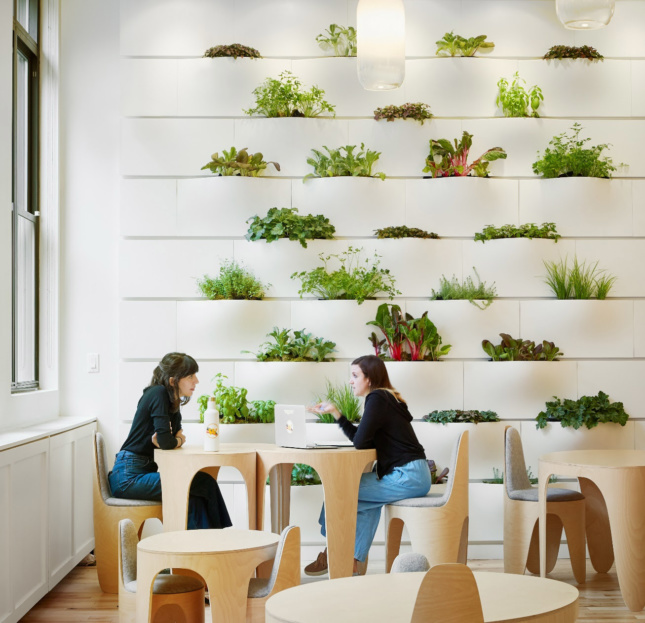 One of the learning stations features a modular greenwall containing edible plants, including lavender and mint.