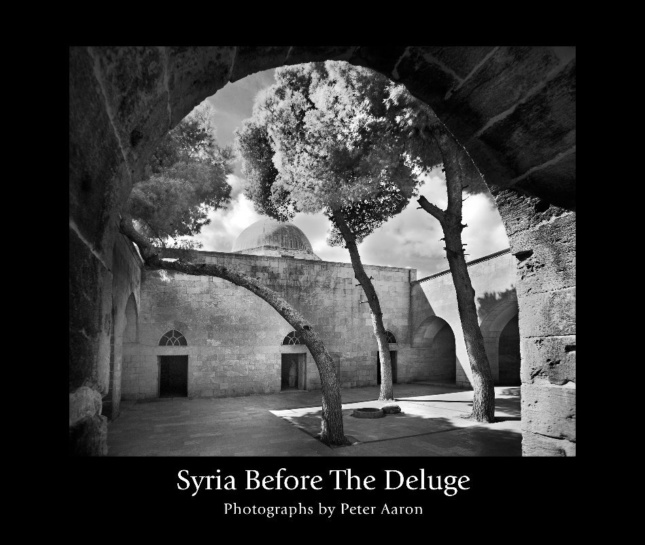 The cover of Syria Before the Deluge