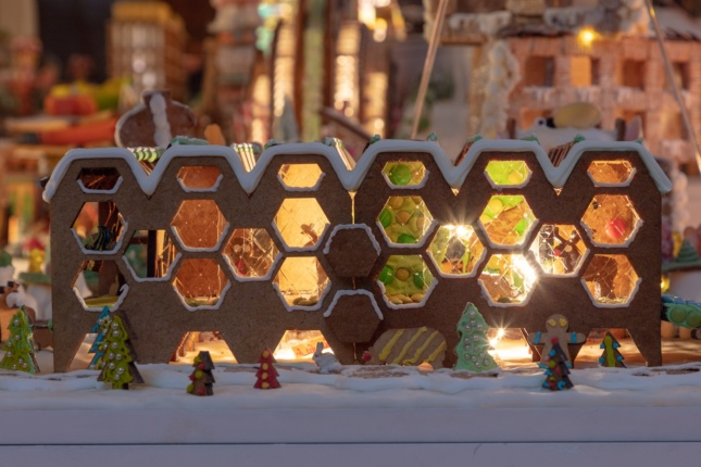 Pitman Tozer Architects designed the hive-themed RecoverBee Centre.