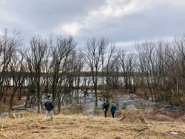 Photo of wetlands in Southern Indiana by Trevor Lee, OLIN Studio