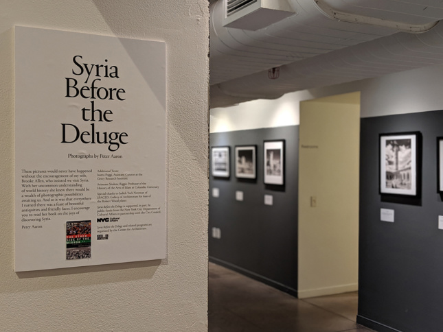"""Photo of gallery wall text saying """"Syria Before the Deluge"""""""
