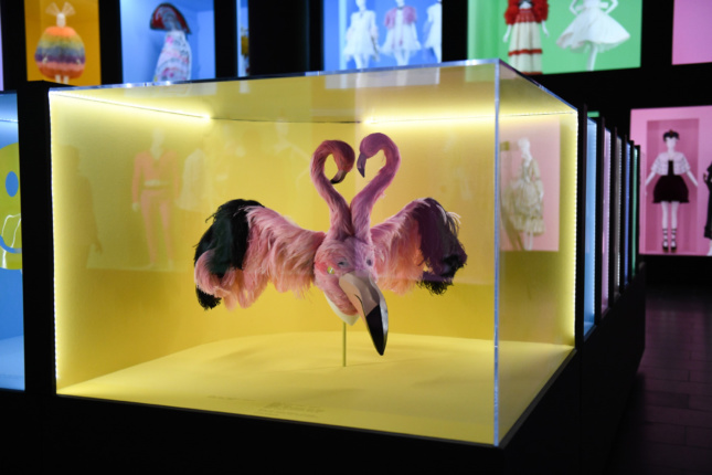 A yellow display case with a mask made of two pink flamingos