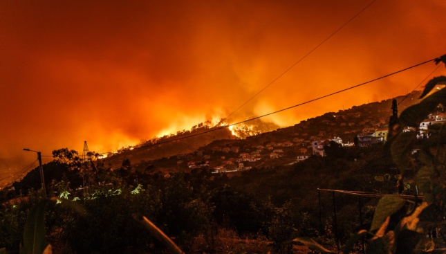 Photo of a wildfire in Portugal