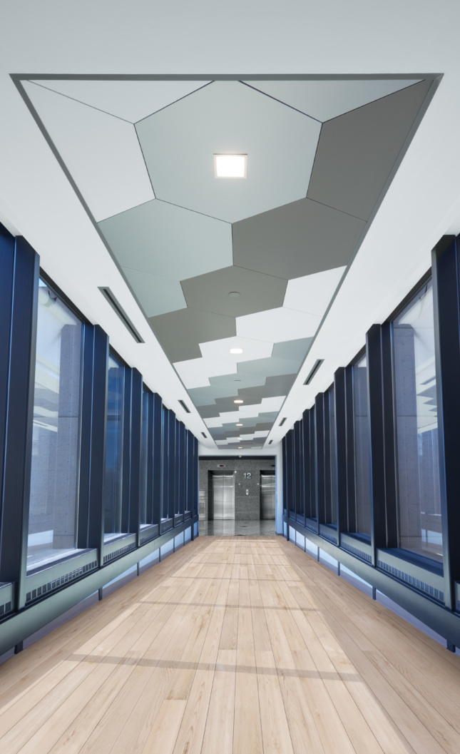 Photo of room with MetalWorks Torsion Spring Shapes Armstrong Ceiling & Wall Solutions ceiling panels