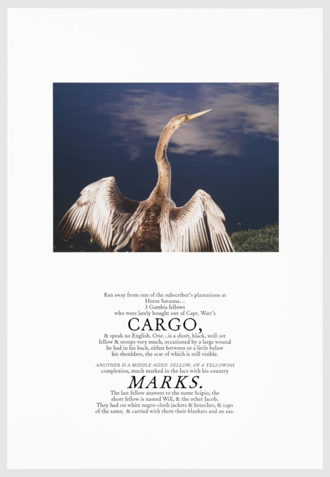 A crane from behind, with the words CARGO and MARKS below