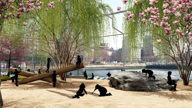Black scalies play on a beach and beneath a willow tree