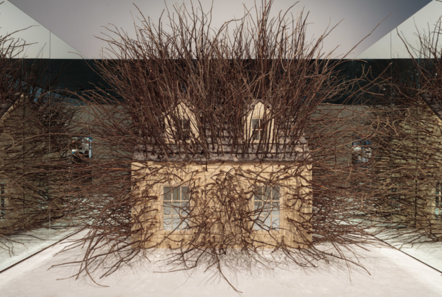 A model house run through with branches, in a mirrored alcove