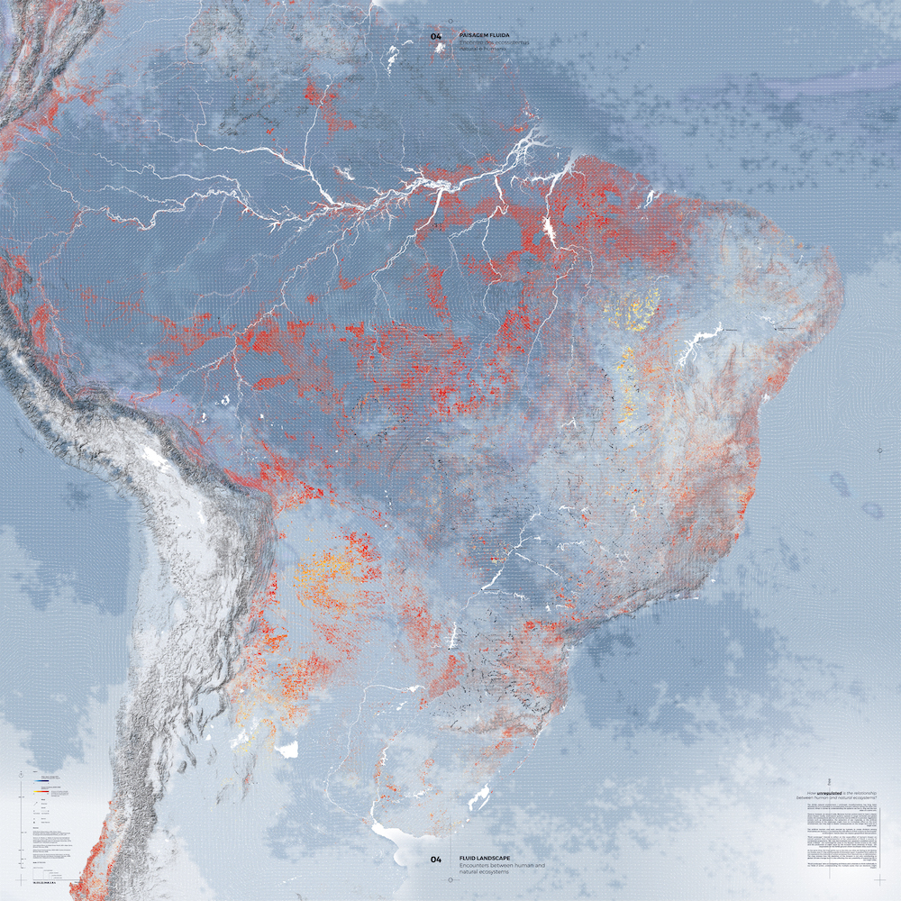A map of the Amazon's deforestation highlighting regional environmental impact