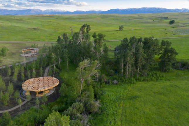 Aerial photo of a timber pavilion in a forest