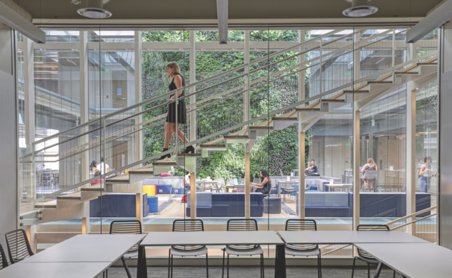 View of girl walking down steps in light-filled glass academic building with green wall
