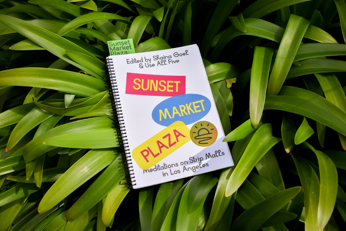 Cover of a book with Sunset Plaza Market on the cover