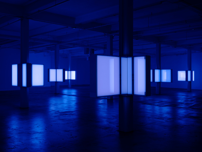 Interior shot of warehouse-like exhibition space with support columns holding light boxes