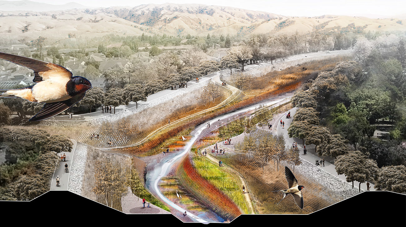 A diagram showing a bird flying by a creek in a landscape architecture rendering