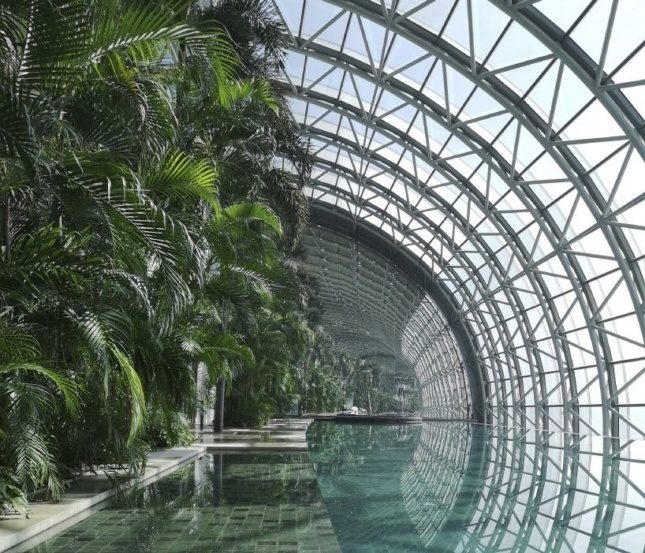 Interior photo from within a curved glass facade with a pool
