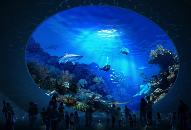 rendering of a shark tank at the Seattle Aquarium with sharks inside
