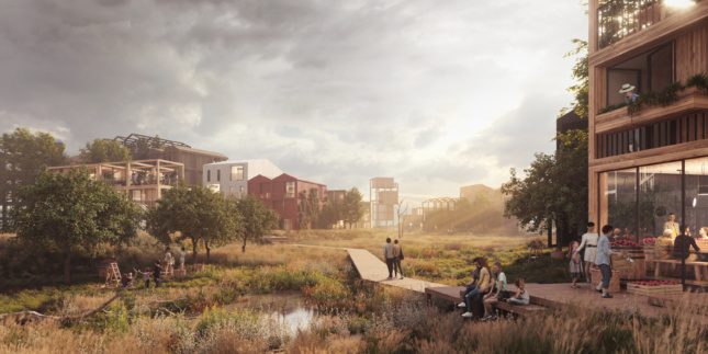 Rendering of fælledby with timber building and nature path running through them