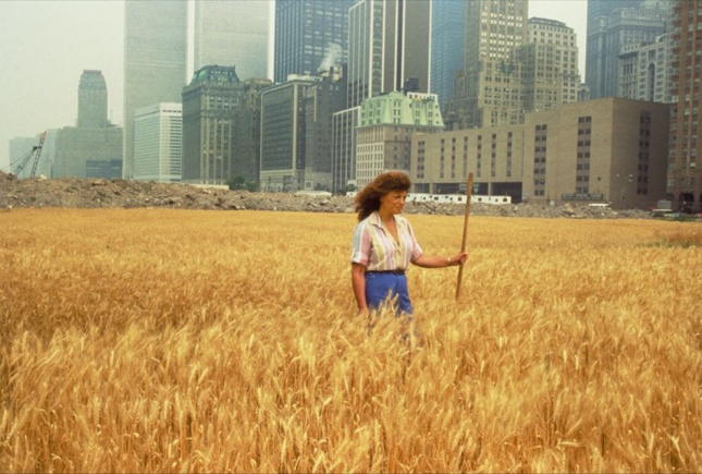 Agnes Denes standing in a field of wheat with tall Manhattan towers behind her