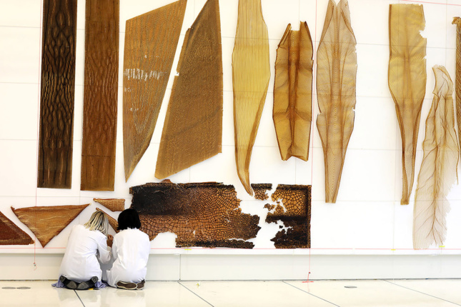 Photo of two women kneeling to install an art exhibition of brown fabricated wing-like objects designed by Neri Oxman