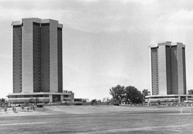 Two +-shaped towers in a field