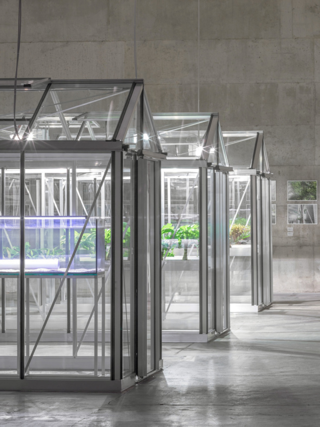 A row of greenhouses inside of a warehouse