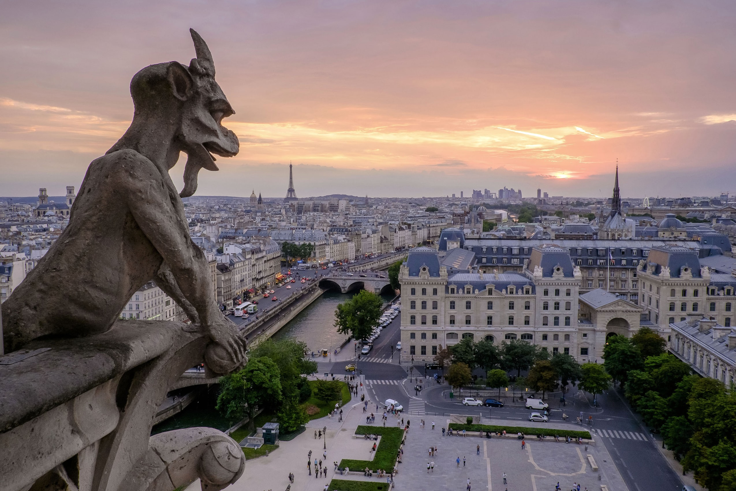 Photo from the roof of Notre-Dame Cathedral showing a gargoyle