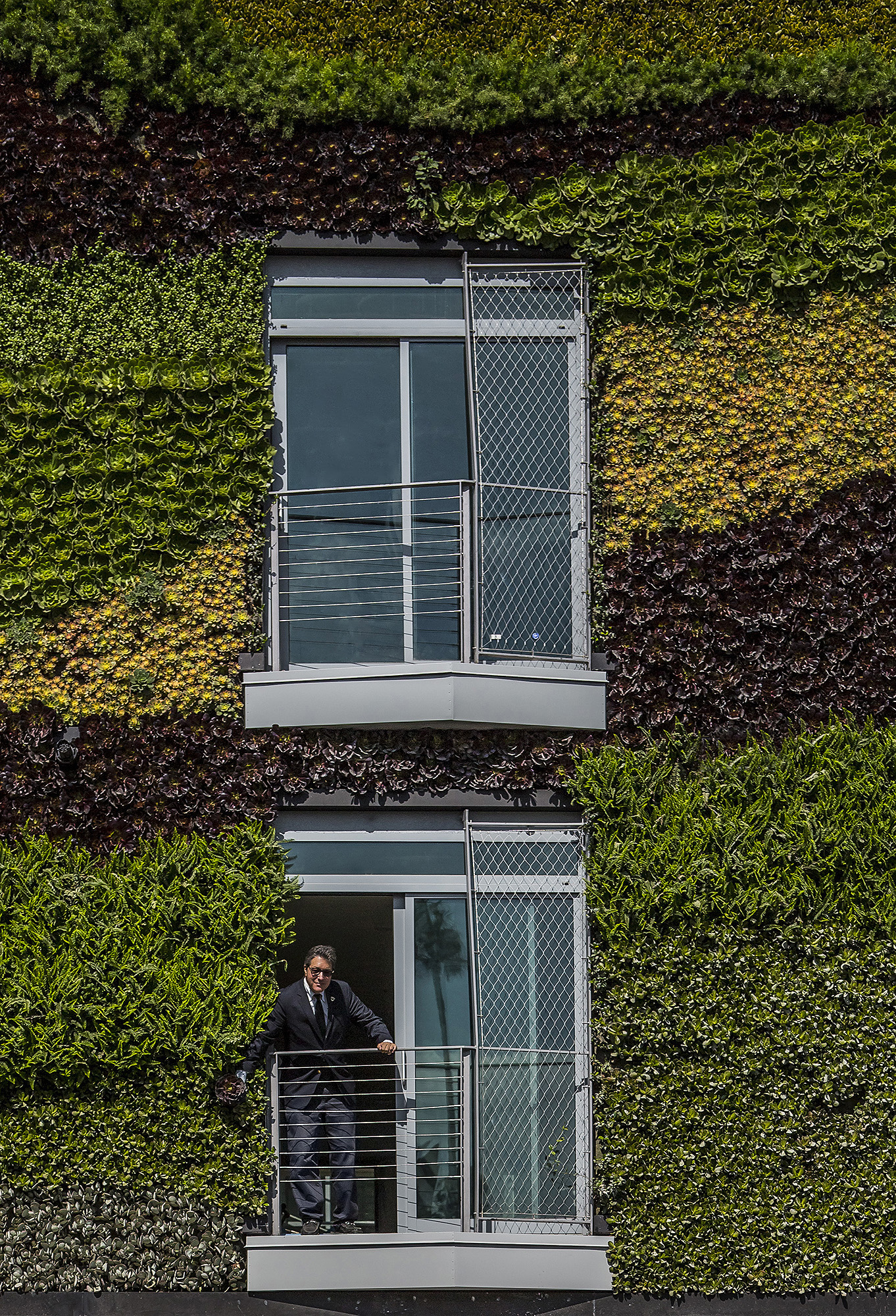 man on a balcony surrounded by greenery