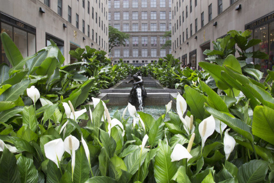 Photo of Rockefeller Center with sculpture