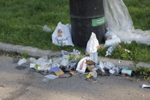 photo of overflowing trash in Prospect Park, one of many affected NYC parks