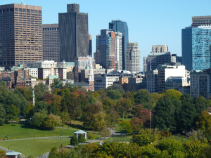 a city park with a skyline in the background; boston common