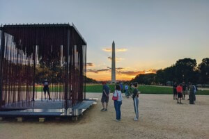 Society's cage, a monument in front of the washington monument