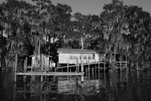 black and white photo of a bayou home ravaged by climate change