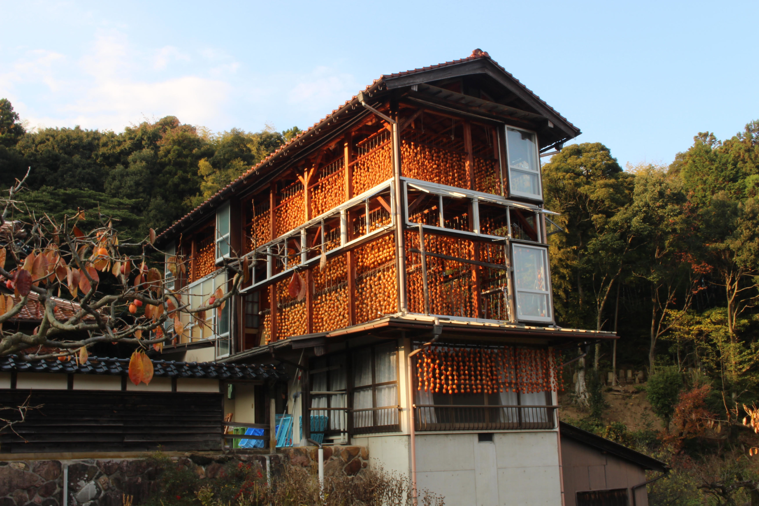 a house in japan with decorative embellishments over windows